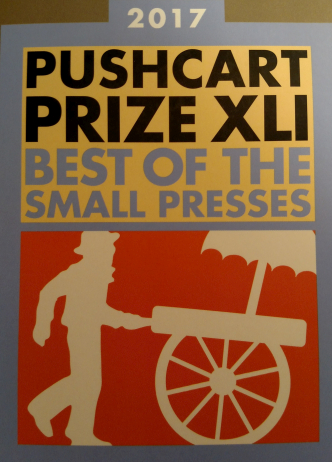Cover of Pushcart Prize XLI 2017